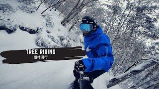 Tree Riding 樹林中高速滑行的關鍵