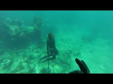 Woman Freediving and Spearfishing in Puerto Rico