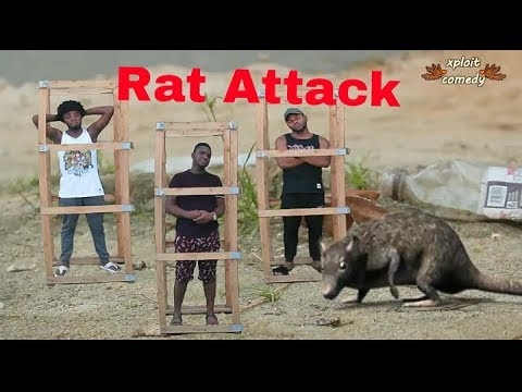 The Rise of Rats (Xploit Comedy Film)