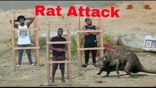 The Rise of Rats Xploit Comedy Film