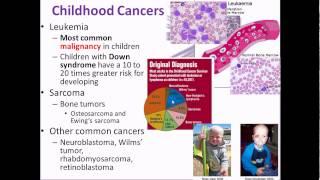 Pathophysiology 19 Chromosomal Aberrations and Childhood cancers