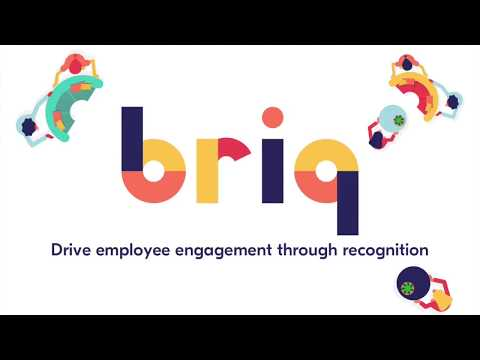 Introducing Briq