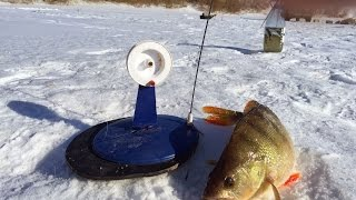 Мечта рыбака. Зимняя рыбалка на Торгае.