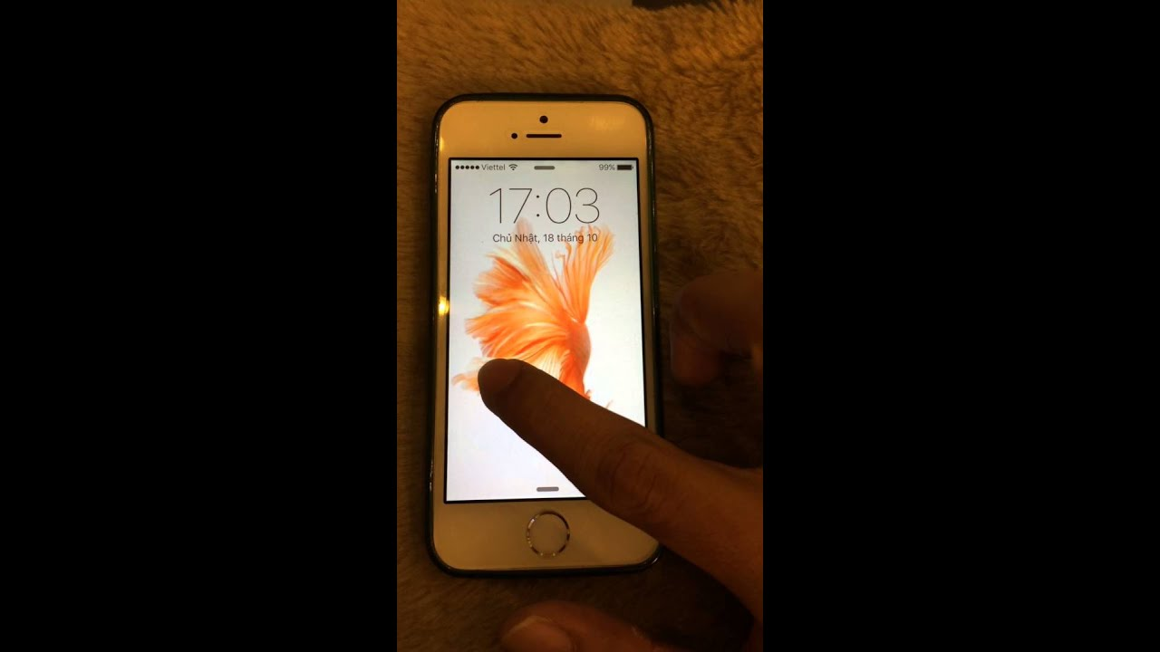 Live Photo Wallpaper on my iPhone 5S , lol - YouTube
