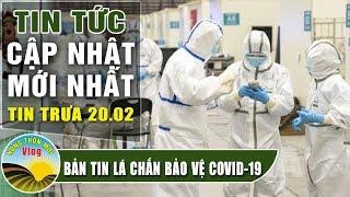 Tin tức dịch bệnh corona trưa 20/2 Bản tin tổng hợp virus corona Việt Nam đại dịch Vũ Hán viêm phổi
