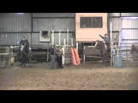 Missouri - 11 year old sorrel head horse