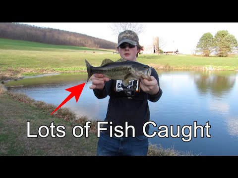 Spring Time PA BASS Fishing | March 2020 (LOTS OF FISH)