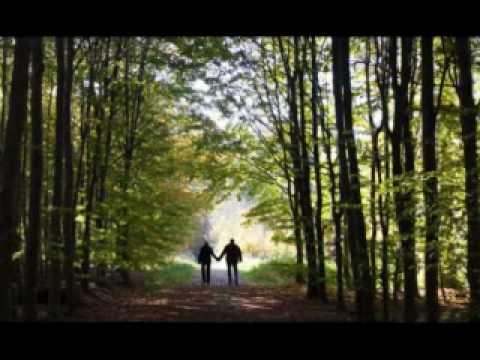 Rachel Carson: The Impact of Silent Spring