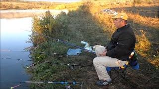 Рыбалка на карпа в августе.Fishing for carp in August.My fishing.