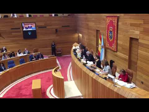 O Parlamento galego rexeita o cesamento da Valedora coa abstención do PP