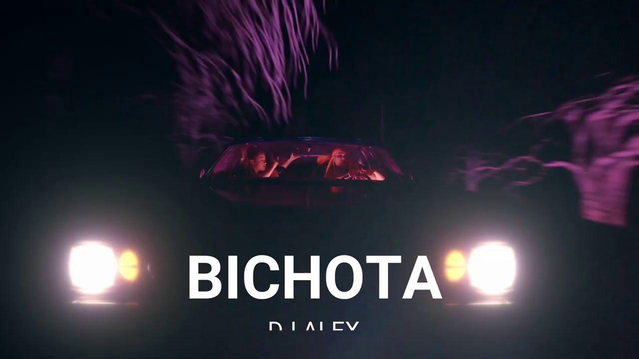 BICHOTA (REMIX) DJ ALEX ✗ KAROL G