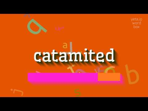 "How to say ""catamited""! (High Quality Voices)"