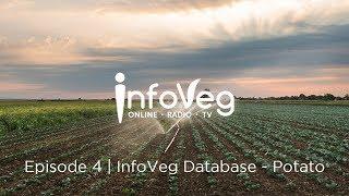 InfoVeg TV - Episode 4 | InfoVeg Database - Potato