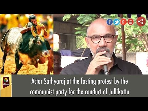 Actor Sathyaraj's Funny Speech at fasting protest in Support Of Jallikattu