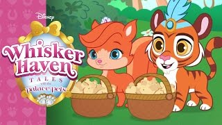 Harvest Haven | Whisker Haven Tales with the Palace Pets | Disney Junior