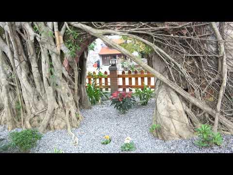 Tiểu cảnh Cổng Tam Quan xưa lưu dấu vết tích cổ