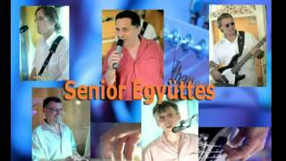 Senior Együttes - The Wall (The Pink Floyd live cover)