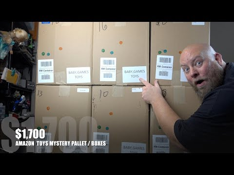 I bought a $1,700 Amazon Customer Returns TOYS Pallet / Mystery Boxes