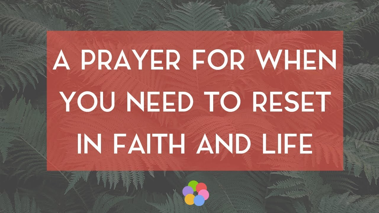 A Prayer for When You Need a Reset - Your Daily Prayer - August 11