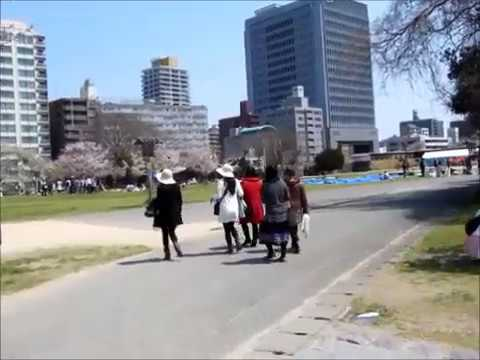 Sỹ Hồi đi Nhật:2 Công viên Ohori Koen