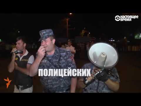 Собака, которая ходит на все митинги в Ереване