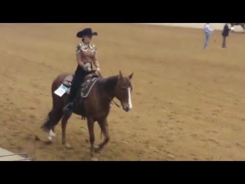 Jill Pfisthner 2016 IEA National Finals