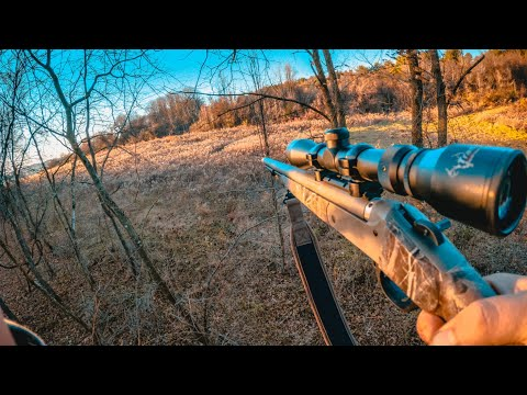 Quick After Work Hunt Deer Hunt PA Rifle Season 2020 Ep. 19