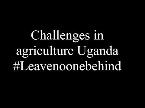 Challenges in agriculture in Uganda #Leavenoonebehind