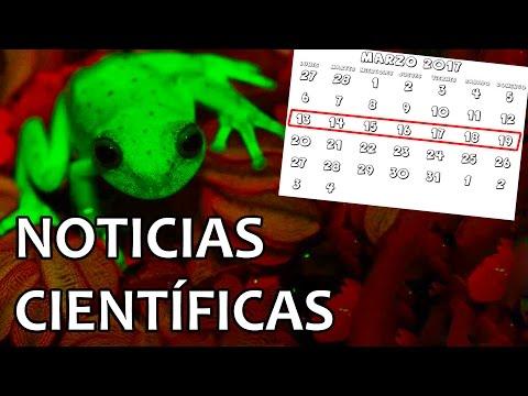 Descubierta rana fluorescente | Noticias 20/3/2017