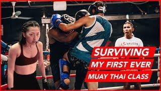 Surviving my first Krudar Muay Thai class   Kensington Market