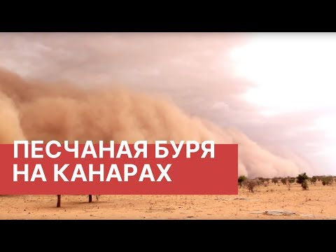 Канарские острова накрыла песчаная буря. Песчаная буря на Канарах