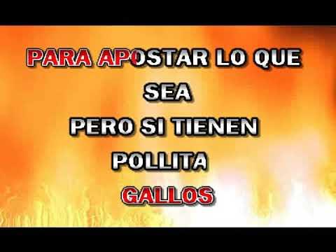 GALLO DE PELEA LOS TIGRES DEL NORTE karaoke
