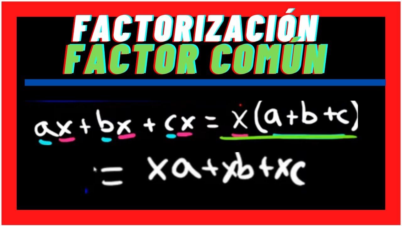 FACTORIZACIÓN por medio de Factor Común |Factorización|