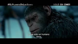 El Planeta de los Simios La Guerra  TV spot VIRUS  Próximamente   Solo en cines