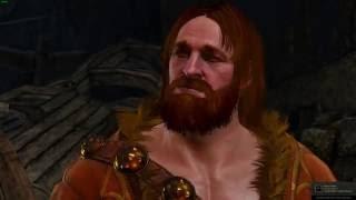 The Witcher 3 Виги