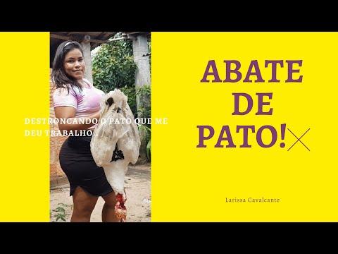 COMO ABATER PATO RÁPIDO       #MATEI  #PATO #NA #CHACARA