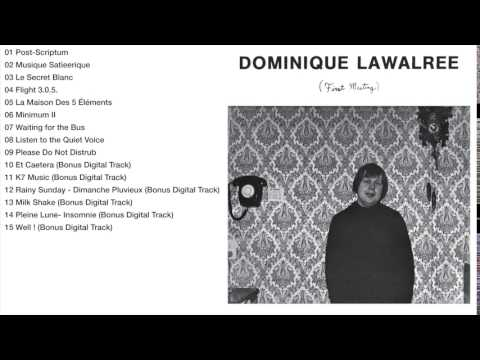 Dominique Lawalree - First Meeting (album)