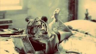 Nôze - When Tiger Smoked (Original Mix)