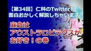 【第34回】仁科のTwitterを面白おかしく解説しちゃいます!【麻倉はアウストラロピテクスがお好き!の巻】