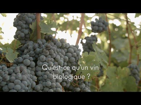 2-Qu'est-ce qu'un vin biologique? / What is an organic wine?