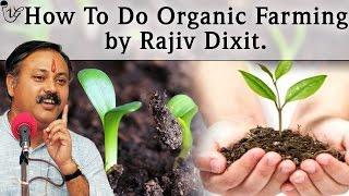 How To Do Organic Farming by Rajiv Dixit   जैविक खेती की जानकारी   राजीव दिक्षित