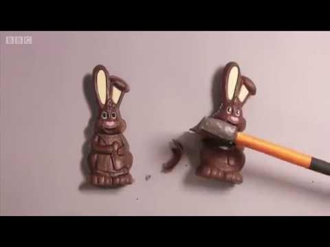 أي من هذه الأرانب حقيقية؟  - نشر قبل 11 دقيقة