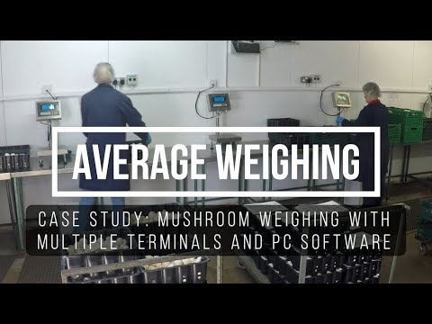 Average Weighing Solutions - Organic Mushroom Factory Case Study