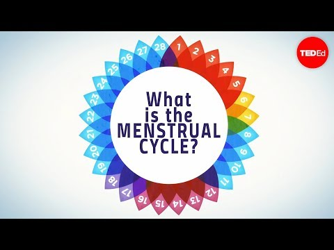 How menstruation works - Emma Bryce thumbnail