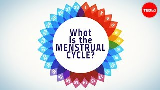 How menstruation works - Emma Bryce