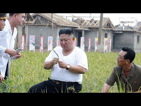 Kim Jong-un inspects flood-hit village after typhoon, wearing an inner shirt