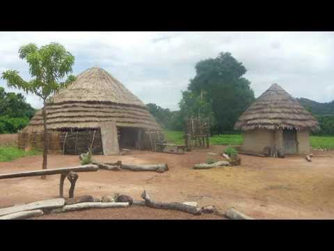 My visit to Guinea, West Africa