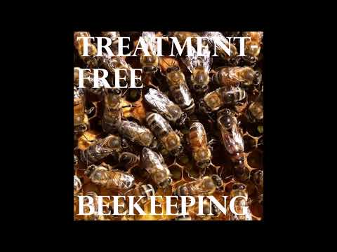 Kirk Webster, Commercial Honey Producer - Episode 32 - Treatment-Free Beekeeping Podcast