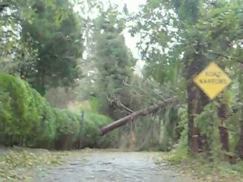 Day After Hurricane Sandy, Huntington, New York.