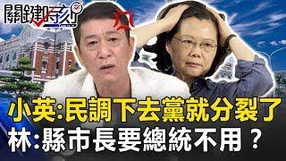 小英「民調下去黨就分裂了」! 林國慶:縣市長都要,為什麼總統不用? 關鍵時刻20190419-2 林國慶 王世堅 林佳新 羅智強